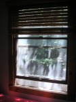 The view out one of my bedroom windows. Sorry about all the dappling -- that's how it looks when I wake up.