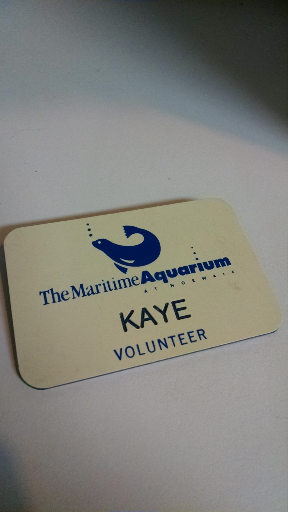 Kaye Original Volunteer Badge