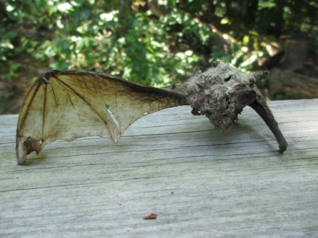 Bat 2