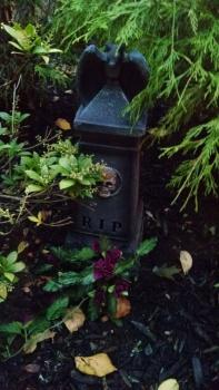 Doll Cemetery 5