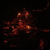 Blaze 25