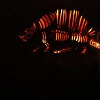 Blaze 27