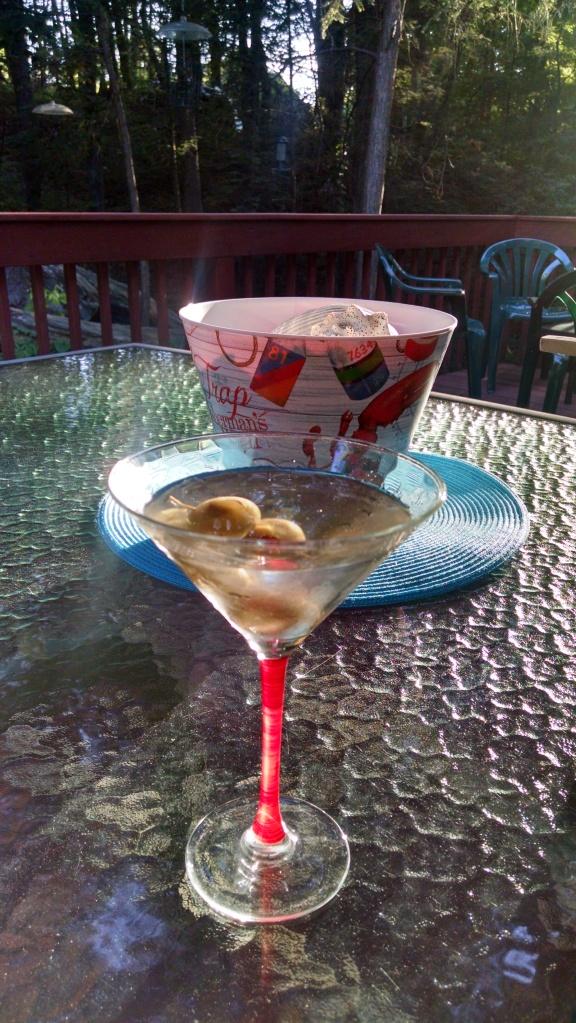 Martini 6-21-2016