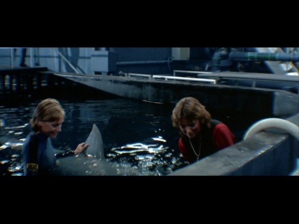 Jaws 3D 9