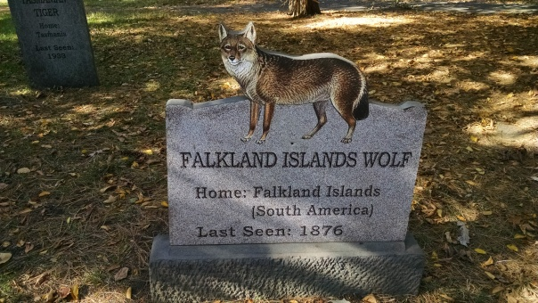 Extinct Species 6 - Falkland Islands Wolf