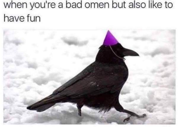 Bad Omen Bird
