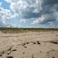 dunes at Scusset